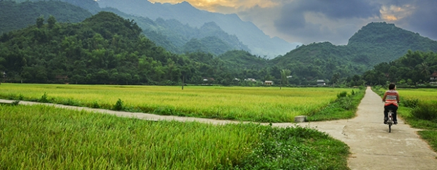 The paddy fields in Vietnam make for a great cycling holiday