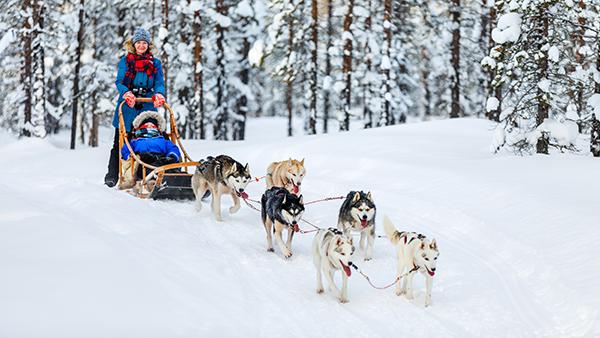 finland_sledding